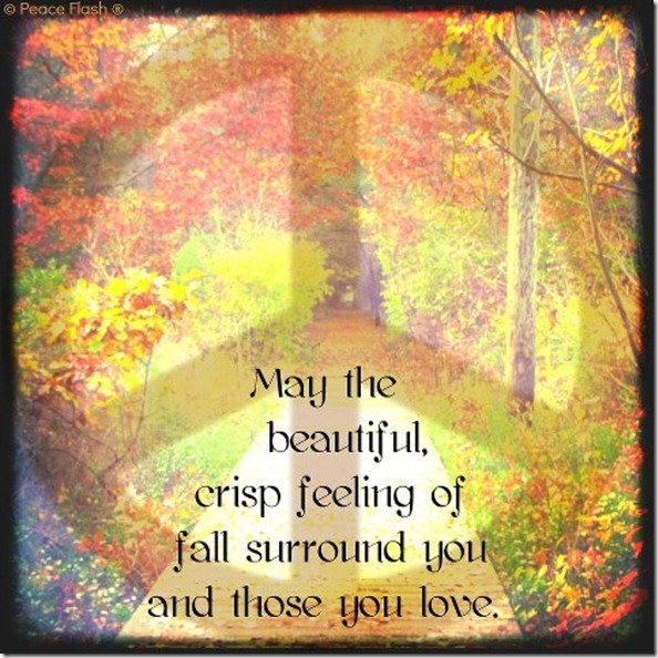 fall-beautiful crisp feeling