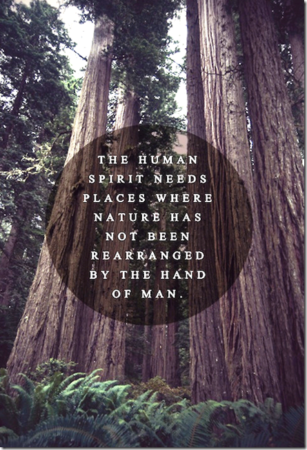 nature-human spirit
